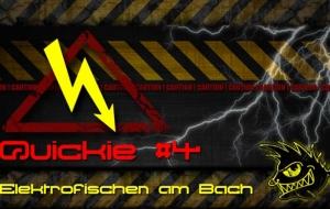 Quickie #4: Elektrofischen am Bach