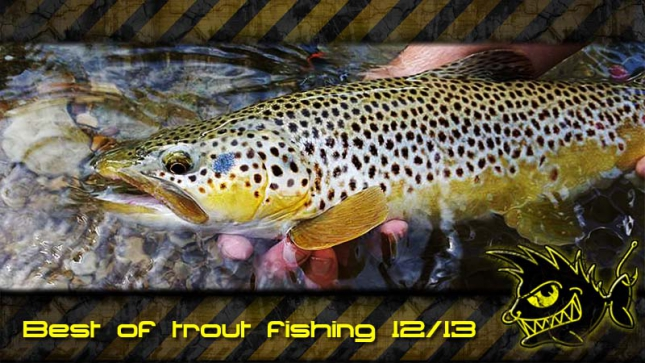 Best of trout fishing 12/13